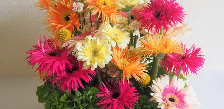 KINU flower